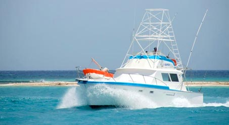 Hawaii Boat, Yacht & Fishing Charters